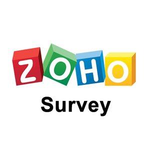 Anketa Zoho Image